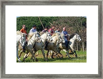 Camargue Cowboys Riding Horses Framed Print by Sami Sarkis