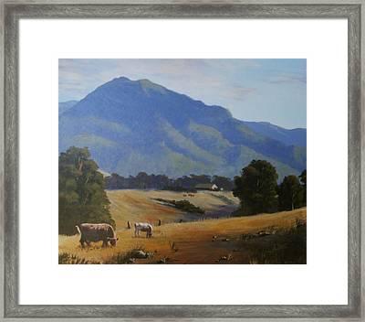 Cambewarra Mountain Framed Print