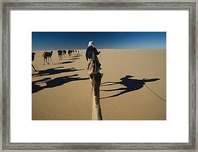 Camel Caravan And Their Shadows Framed Print by Carsten Peter