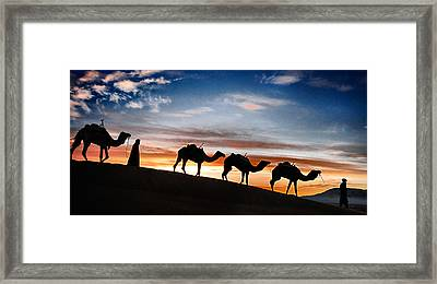 Framed Print featuring the photograph Camels - 2 by Okan YILMAZ