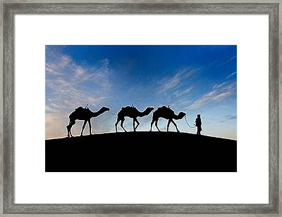 Framed Print featuring the photograph Camels - 3 by Okan YILMAZ