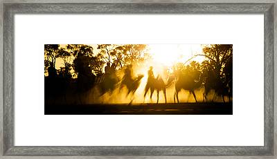 Camels Walking Along Dry River Bed Framed Print by Brooke Whatnall