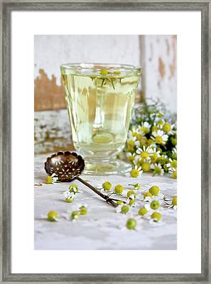 Camomille Tea Framed Print