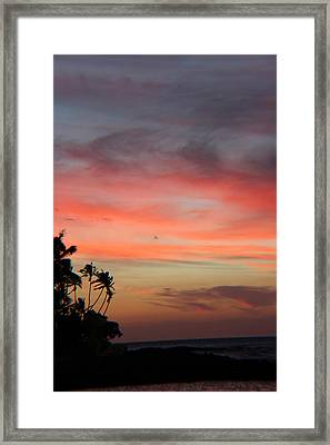 Can It Be Real Framed Print by Raquel Amaral