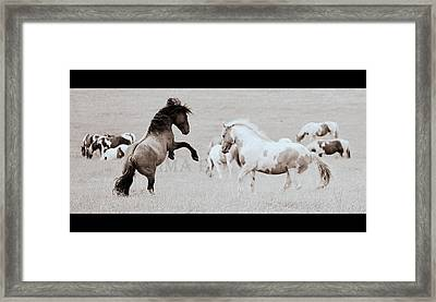 Framed Print featuring the photograph Can We Do This by Rima Biswas