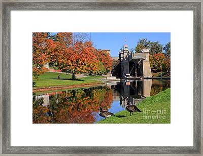 Canada Geese At Lift Lock Framed Print by Charline Xia