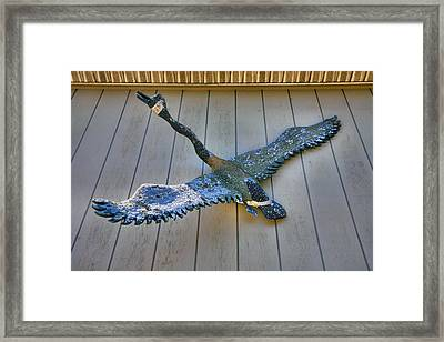 Canada Goose Decoy Framed Print by Steven Ainsworth