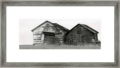 Canadian Barns Framed Print by Jerry Fornarotto