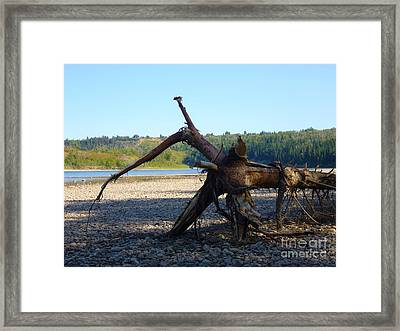 Framed Print featuring the photograph Canadian Driftwood by Jim Sauchyn
