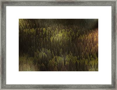 Canadian Forest - The Woods Are Lovely Dark And Deep Framed Print