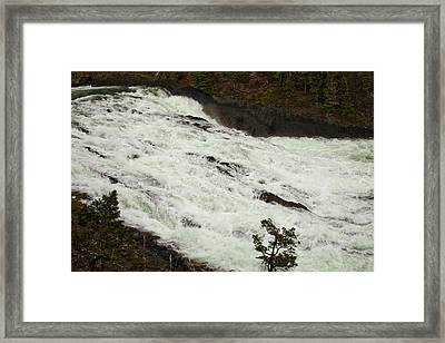 Canadian River 1746 Framed Print by Larry Roberson