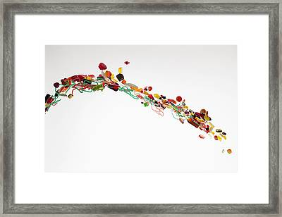 Candy Against A White Background Framed Print by Dual Dual