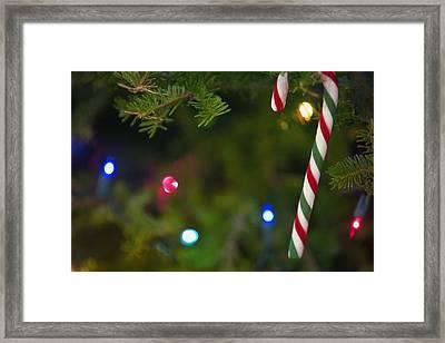 Candy Cane On Tree Framed Print by Carson Ganci