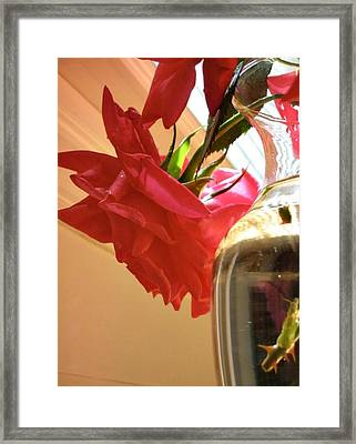 Candy Framed Print by Debbie Sikes