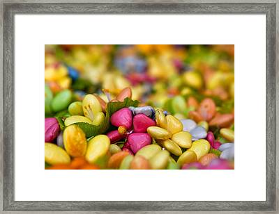 Candy Flowers Framed Print