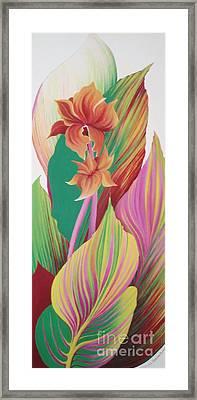 Canna Durban Framed Print
