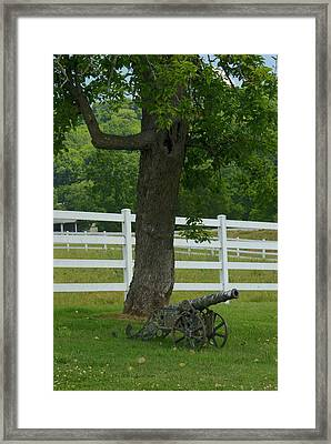 Cannon Tree And Fence Framed Print by Douglas Barnett