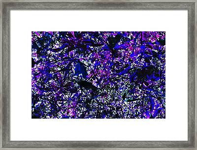 Canopy Framed Print by Dennis Leatherman