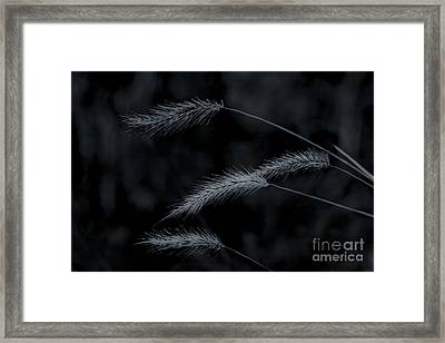 Can't Be Broken Framed Print by Kim Henderson