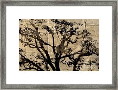 Canvas Print Framed Print by Dean Harte