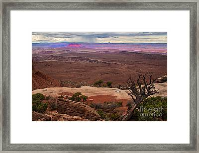 Canyonland Overlook Framed Print