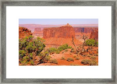 Canyonlands Framed Print