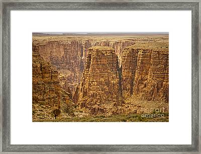 Canyons  Framed Print by James BO  Insogna