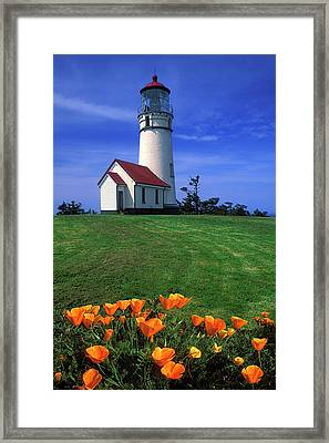 Cape Blanco Lighthouse Oregon Framed Print by Dave Mills