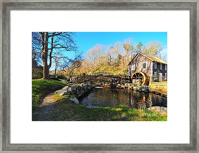 Cape Cod Grist Mill Framed Print by Catherine Reusch Daley
