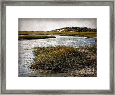 Cape Cod National Seashore Framed Print by Joan  Minchak