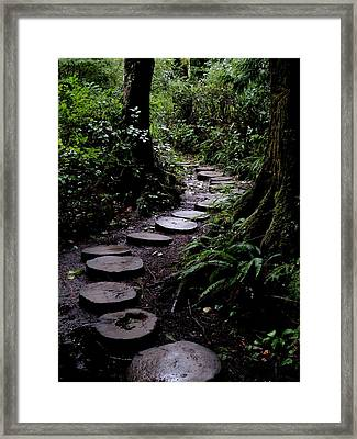 Cape Flattery Trail Framed Print by Fred Russell
