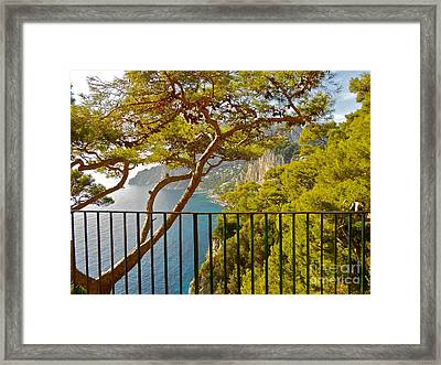 Capri Panorama With Tree Framed Print