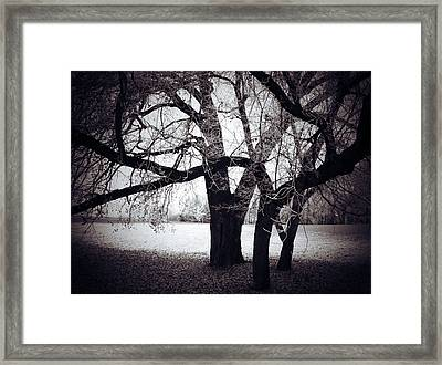 Captions Cradle  Framed Print by Jerry Cordeiro