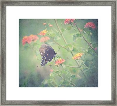 Captivating I Framed Print