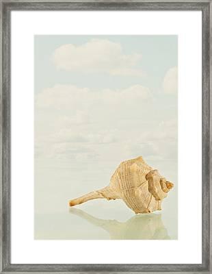 Caracola Framed Print