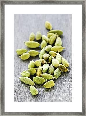 Cardamom Seed Pods Framed Print by Elena Elisseeva