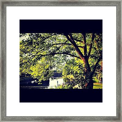 #cardiff #london2012 #olympics Framed Print by Nerys Williams