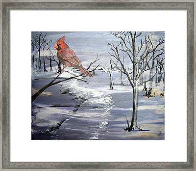 Cardinal In Winter Framed Print by Diane Peters