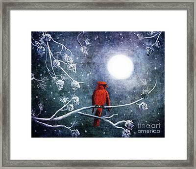 Cardinal On A Wintry Night Framed Print
