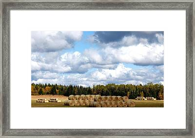 Cariboo Ranching Country Framed Print by Will Borden