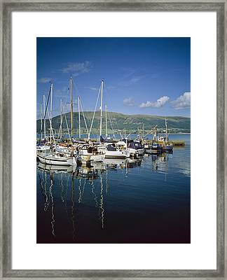 Carlingford Yacht Marina, Co Louth Framed Print by The Irish Image Collection