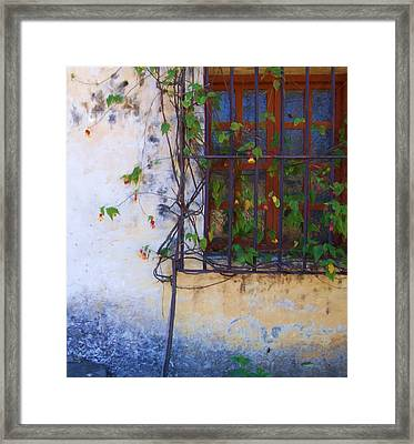 Carmel Mission Window And Flowers Framed Print by Jim Pavelle