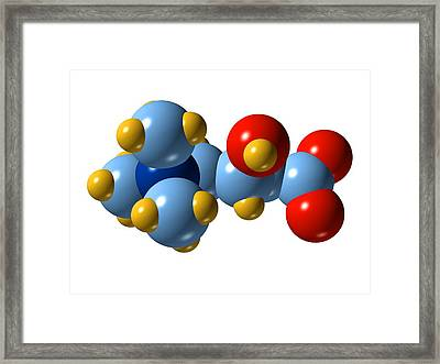 Carnitine Molecule Framed Print by Dr Mark J. Winter