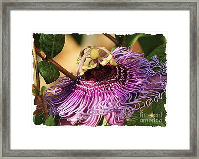 Framed Print featuring the photograph Carnival Ride by Lori Mellen-Pagliaro