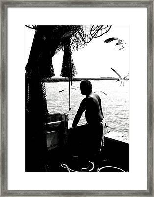 Framed Print featuring the photograph Carolina Cullin' by Lyn Calahorrano