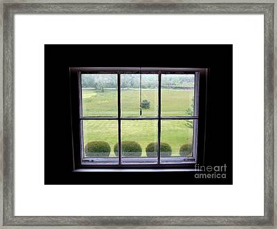 Carolina Meadow Framed Print