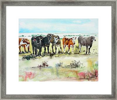 Framed Print featuring the painting Carol's Cows by Tom Riggs
