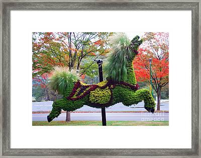 Carousel Horse  A Framed Print