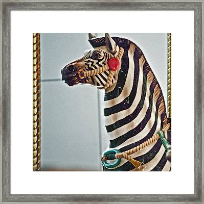 Carousel Zebra Framed Print by Bill Owen