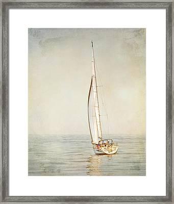 Framed Print featuring the photograph Carpe Diem by Karen Lynch